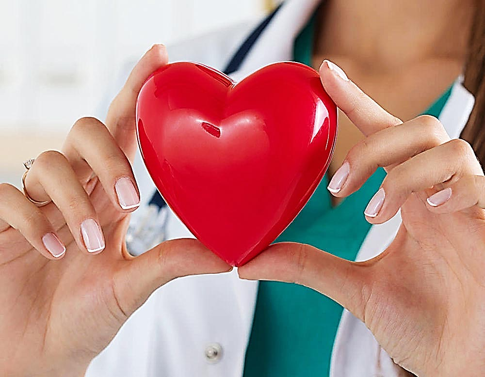Cardiovascular Portfolio image of a doctor holding a red heart shape